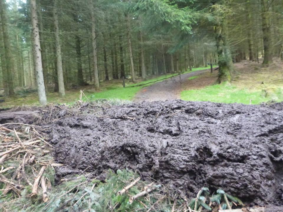 The mud!!
